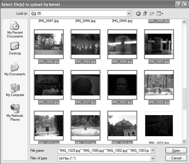Multiple file upload screen