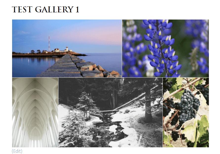 justified gallery template (Foo Gallery)