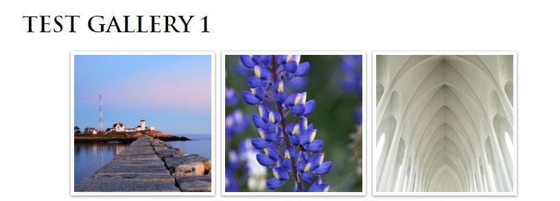 responsive gallery template (Foo Gallery)