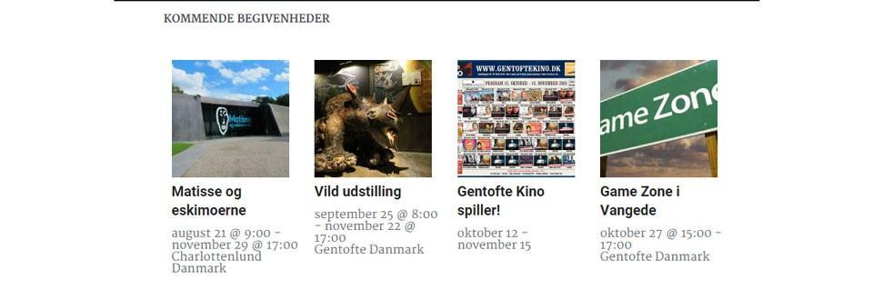 detail of Events Calendar Pro widget on Dit Gentofte website