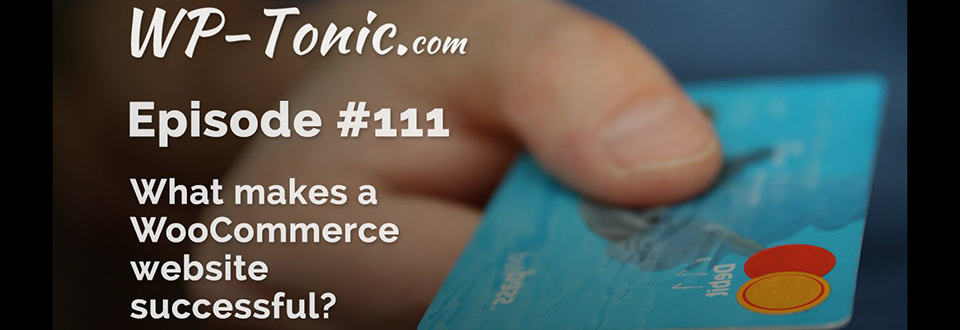 WP-Tonic 111: What makes a WooCommerce site successful?