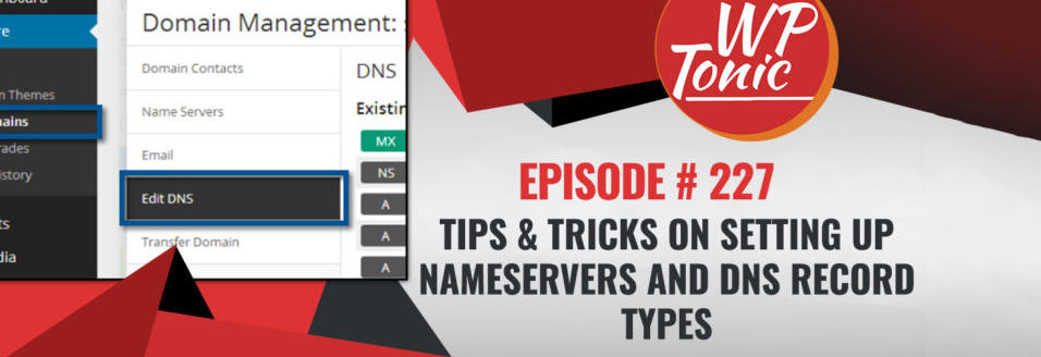 227 WP-Tonic: Setting Up Nameservers and DNS Record Types